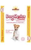 dog_choice1